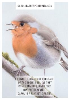 Bird drawing testimonial