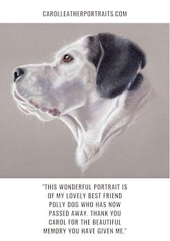 Dog portrait drawing testimonial